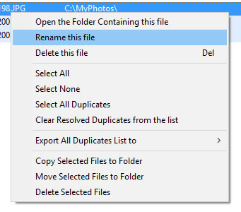 Manage Duplicate Photos Actions
